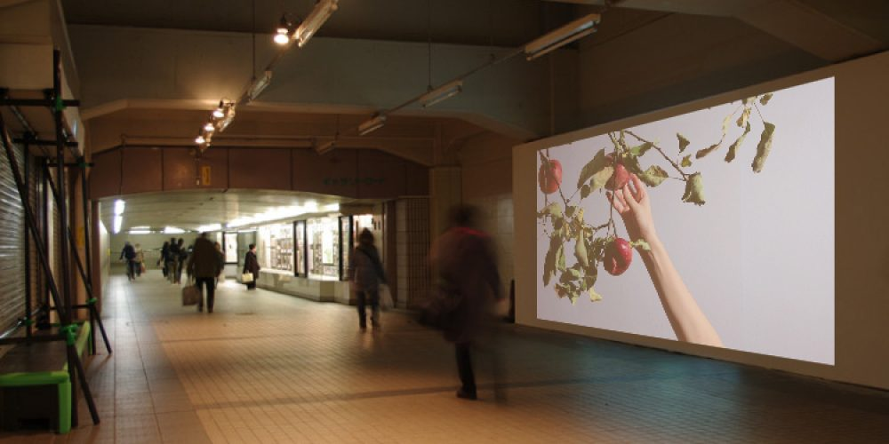 Toride International Video Projection, Japan