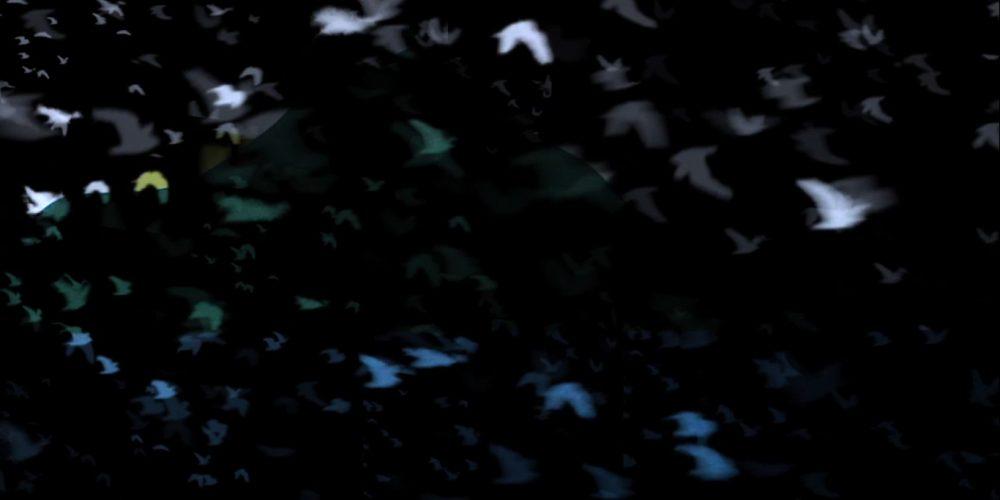 """Flight of Memory"" screened in Ireland"